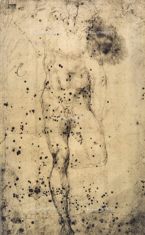 DIS-F-001342-0000 - Study of male nude with raised left leg, drawing, Michelangelo, The Louvre, Paris
