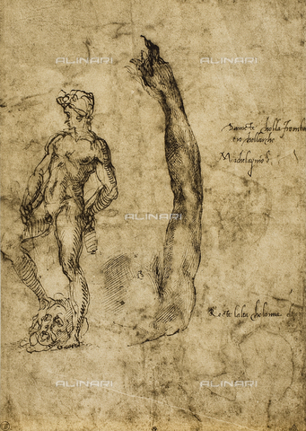 DIS-F-001351-0000 - Study for the David statue, drawing, Michelangelo, The Louvre, Paris