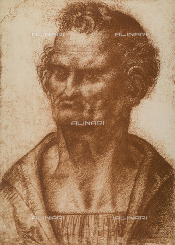 "DIS-F-001557-0000 - Male caricature, drawing from the ""school"" of Leonardo, The Louvre, Paris"