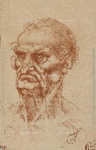 DIS-F-001605-0000 - Testa senile, disegno, Leonardo da Vinci, Museo del Louvre, Parigi