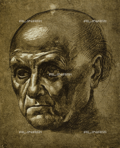 DIS-F-001608-0000 - Study of the face of a man, Louvre Museum, Paris