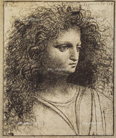 DIS-F-001613-0000 - Studio di testa giovanile, disegno, Leonardo, Museo del Louvre, Parigi