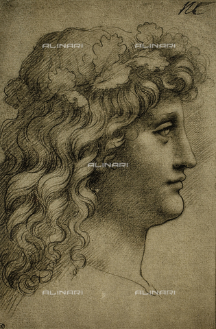 DIS-F-001615-0000 - Head of a young man, drawing by Leonardo da Vinci, The Louvre, Paris