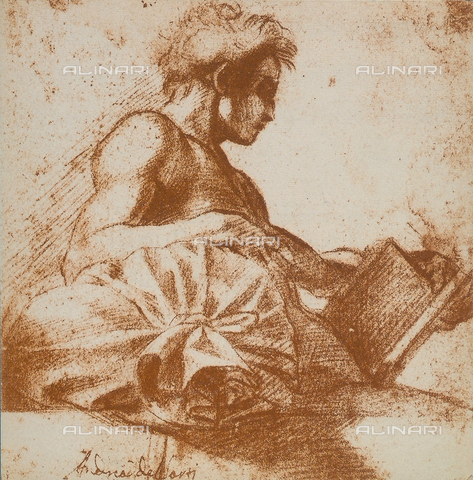 DIS-F-001664-0000 - Study of a masculine figure, Andrea del Sarto, British Museum, London