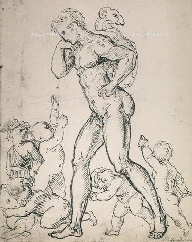 DIS-F-001709-0000 - Studio per la figura di un pastore e alcuni putti, Raffaello, British Museum, Londra