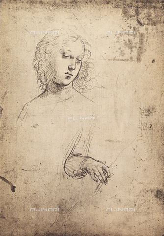 DIS-F-001724-0000 - Female face and hand, drawing by Raphael, British Museum, London