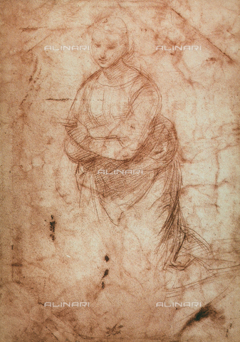 DIS-F-001730-0000 - Study for a Madonna, Raphael, British Museum, London
