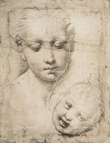 DIS-F-001731-0000 - Madonna con il Bambino, Raffaello, British Museum, Londra