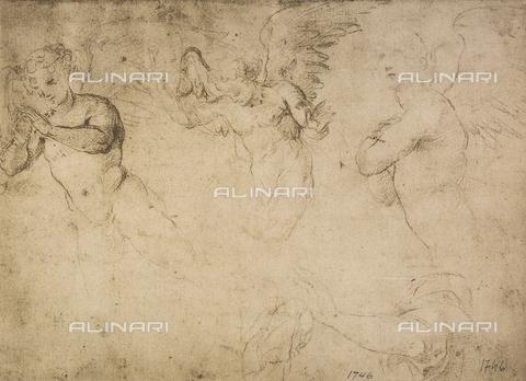 DIS-F-001746-0000 - Studio di un gruppo di angeli, British Museum, Londra