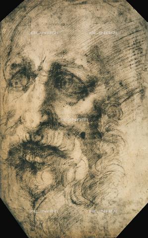 DIS-F-001755-0000 - Testa di profeta, disegno della Scuola di Michelangelo, British Museum, Londra
