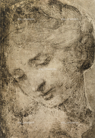 DIS-F-001759-0000 - Woman's head, School of Raphael, British Museum, London