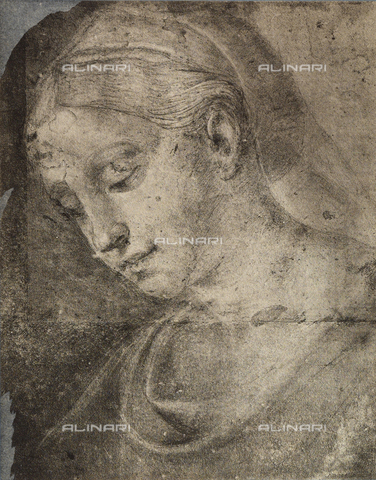 DIS-F-001762-0000 - Feminine head, School of Raphael, British Museum, London