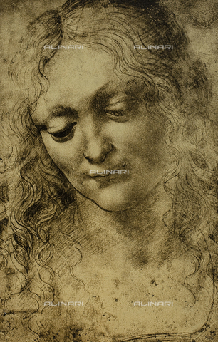 DIS-F-001780-0000 - Female portrait, drawing by Leonardo da Vinci, British Museum, London