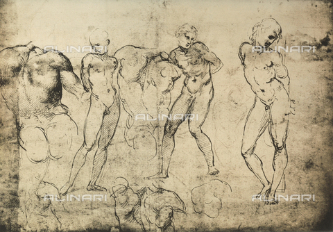 DIS-F-003994-0000 - Vari studi per un San Sebastiano, Graphische Sammlung, Albertina, Vienna