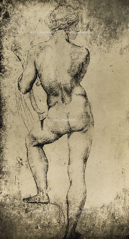 DIS-F-004013-0000 - The god Apollo seen from the rear; drawing by Raphael. Graphische Sammlung, Albertina, Vienna