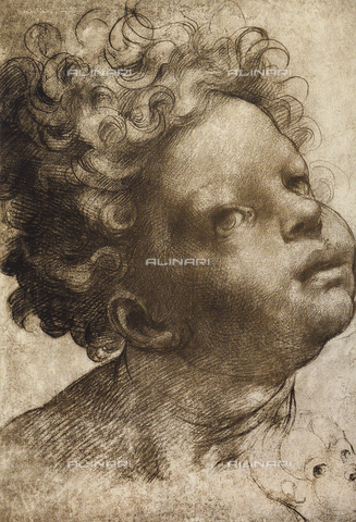 DIS-F-004030-0000 - Study of a baby's head (male),Graphische Sammlung, Galleria Albertina, Vienna