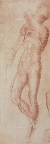 DIS-F-01050B-0000 - Study of a male nude, Casa Buonarroti, Florence