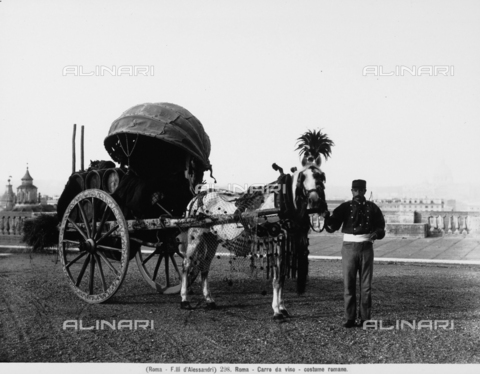 FAA-F-000298-0000 - A wine cart pulled by a horse draped in finery, held by a man in traditional costume, posed along a street in Rome