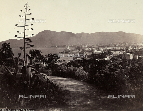 FBQ-A-006106-0001 - View of Palermo from Villa Belmonte - Data dello scatto: 1880 ca. - Archivi Alinari, Firenze