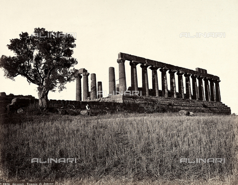 FBQ-A-006106-0032 - The Temple of Juno in the Valley of the Temples in Agrigento, east side - Data dello scatto: 1865 ca. - Archivi Alinari, Firenze