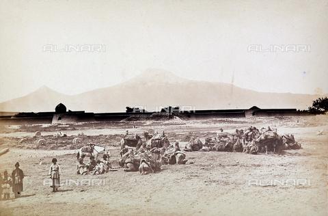 FBQ-A-006327-0013 - Una carovana di cammelli in Iran - Data dello scatto: 1860 ca. - Archivi Alinari, Firenze