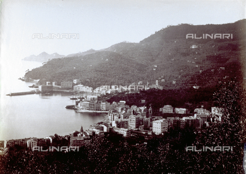 FBQ-F-000362-0000 - Panorama of a stretch of the Ligurian coast with the town of Santa Margherita Ligure - Data dello scatto: 1870 - 1880 - Archivi Alinari, Firenze
