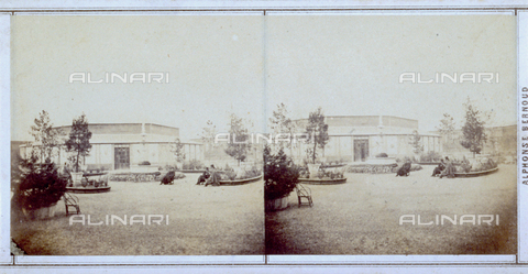 FBQ-F-005883-0000 - Garden prepared for the Italian Exhibition of 1861 held in Florence - Date of photography: 1861 - Fratelli Alinari Museum Collections, Florence
