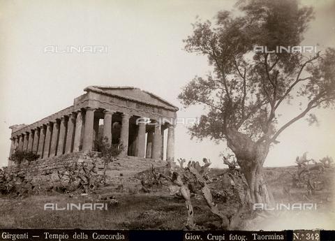 FBQ-F-006897-0000 - Il Tempio della Concordia ad Agrigento - Data dello scatto: 1880-1890 - Archivi Alinari, Firenze