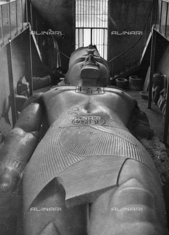 FCA-F-000166-0000 - Colosso di Ramses II (1303 a.C. – 1212 a.C), statua in calcare, Museo delle Antichità Egizie, Il Cairo - Data dello scatto: 1950-1960 - Archivi Alinari, Firenze