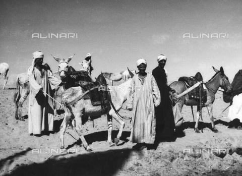 FCA-F-000175-0000 - Beduini con asini, Egitto - Data dello scatto: 1950-1960 - Archivi Alinari, Firenze