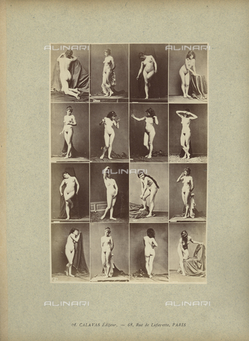 FCC-A-000089-0002 - Female nude posing - Date of photography: 1880-1890 - Fratelli Alinari Museum Collections-Favrod Collection, Florence