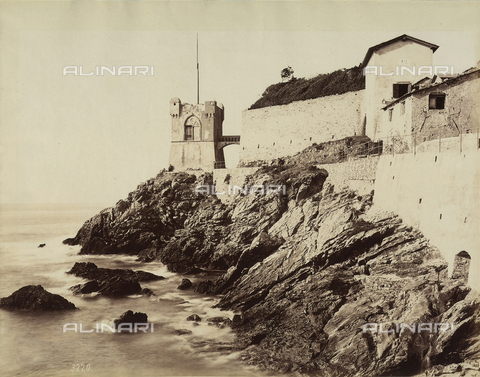 FCC-F-011158-0000 - Gropallo Tower in the park of the Villa Gropallo, in Nervi - Data dello scatto: 1865-1885 - Archivi Alinari, Firenze