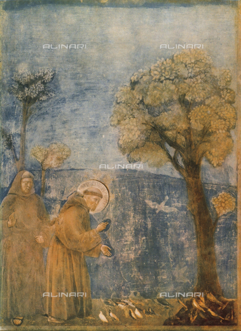 FDC-F-000689-0000 - Saint Francis preaching to the birds, Upper Church, Basilica of San Francesco, Assisi