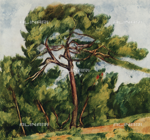 FDC-F-001145-0000 - The great pine, Art Museum, Sao Paulo, Brazil