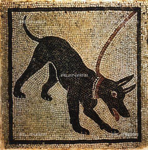 FDC-F-001261-0000 - Mosaic with a dog, National Archaeological Museum, Naples
