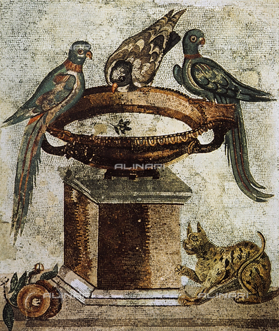 FDC-F-001264-0000 - Mosaic with cup, parrot and doves, National Archaeological Museum, Naples.