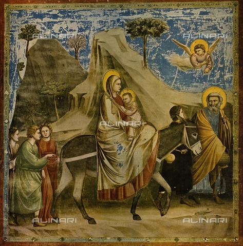 FDC-F-002787-0000 - La fuga in Egitto - Cappella degli Scrovegni, Padova