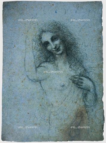 FIA-F-039956-0000 - Angelo incarnato, gessetto su carta, Leonardo da Vinci (1452-1519), Collezione Privata - Fine Art Images/Archivi Alinari, Firenze