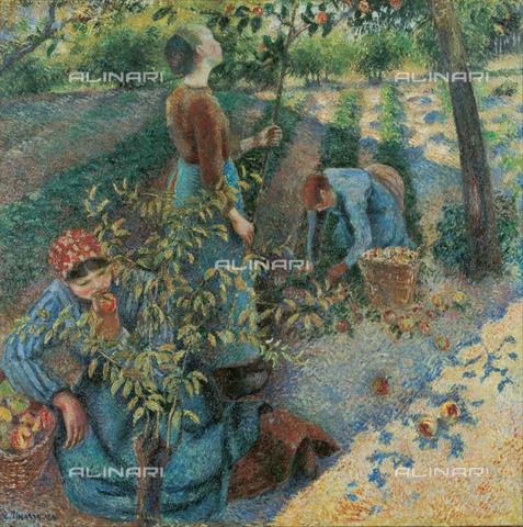 FIA-F-042352-0000 - Raccolta delle mele, olio su tela, Pissarro, Camille (1830-1903), Ohara Museum of Art, Kurashiki - Fine Art Images/Archivi Alinari, Firenze