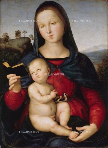 FIA-F-056370-0000 - Madonna col Bambino (Madonna Solly), tempera e olio su tavola, Raffaello Sanzio (1483-1520), Staatliche Museen, Berlino - Fine Art Images/Archivi Alinari, Firenze