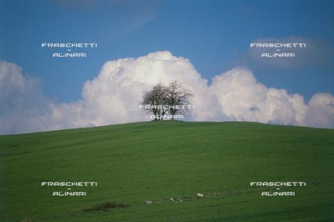 """FMA-F-001271-0000 - Natura â?"""" Alto Lazio: Colori della Primavera"""