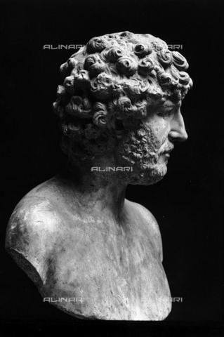 FPA-F-002731-0000 - Male bust, National Archaeological Museum, Venice - Date of photography: 1940 ca. - Alinari Archives-Fiorentini Archive, Florence