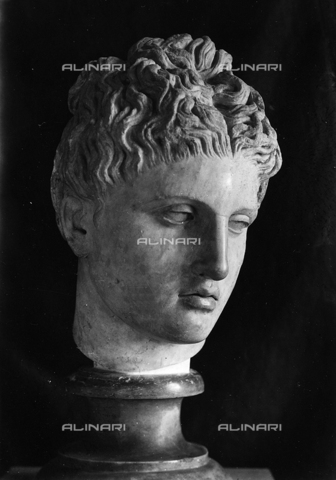 FPA-F-004718-0000 - Head of Apollo, marble, National Archaeological Museum, Venice - Date of photography: 1940 ca. - Alinari Archives-Fiorentini Archive, Florence