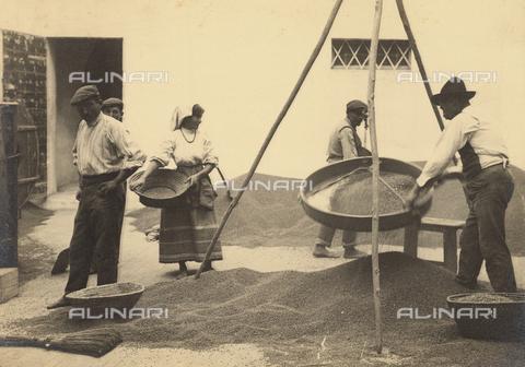 FVD-S-006542-0B21 - Contadini che setacciano il grano - Data dello scatto: 1895-1910 - Donazione Biondi / Archivi Alinari, Firenze