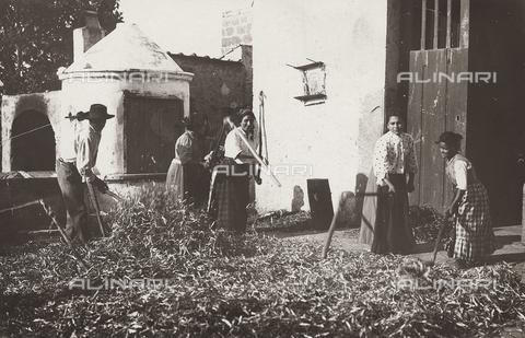 FVD-S-006542-0B25 - Contadini che battono il grano - Data dello scatto: 1895-1910 - Donazione Biondi / Archivi Alinari, Firenze