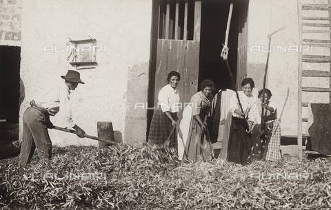 FVD-S-006542-0B26 - Contadini che battono il grano - Data dello scatto: 1895-1910 - Donazione Biondi / Archivi Alinari, Firenze
