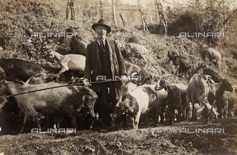 FVD-S-006542-0B28 - Pastore e capre - Data dello scatto: 1895-1910 - Donazione Biondi / Archivi Alinari, Firenze