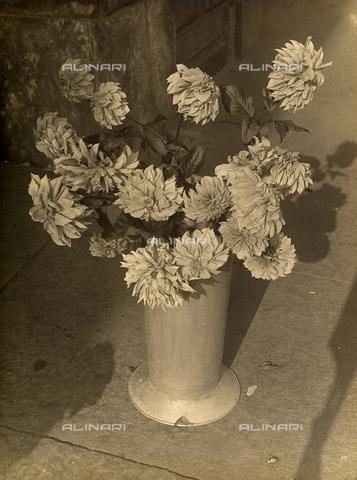 FVQ-F-000097-0000 - Vaso di fiori - Data dello scatto: 1930-1935 ca. - Archivi Alinari, Firenze