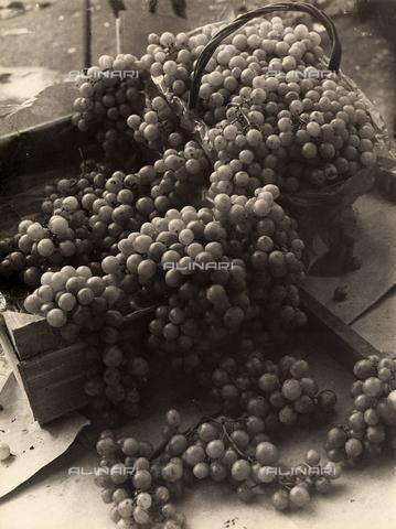 FVQ-F-000098-0000 - Uva - Data dello scatto: 1935 ca. - Archivi Alinari, Firenze