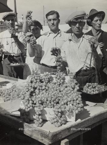 FVQ-F-000647-0000 - Grappoli d'uva - Data dello scatto: 1920-1930 - Archivi Alinari, Firenze